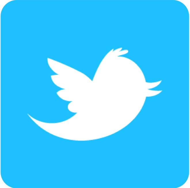 Official Twitter button - 300
