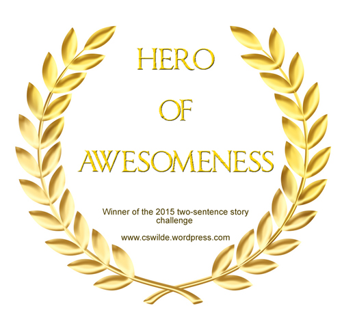 hero of awesomeness